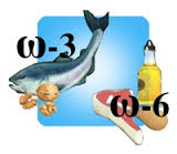 omega 3 omega 6 ratio